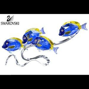 Swarovski surgeon fish scuba blue USD 975$!💰💰💰